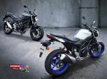 Suzuki-SV650-AL7-Duo