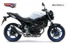 Suzuki-SV650-AL7-White-RHS