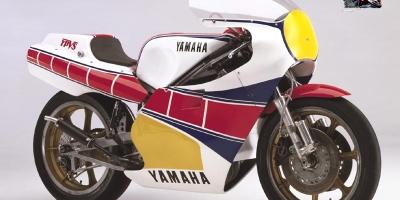 1982 YZR OW60