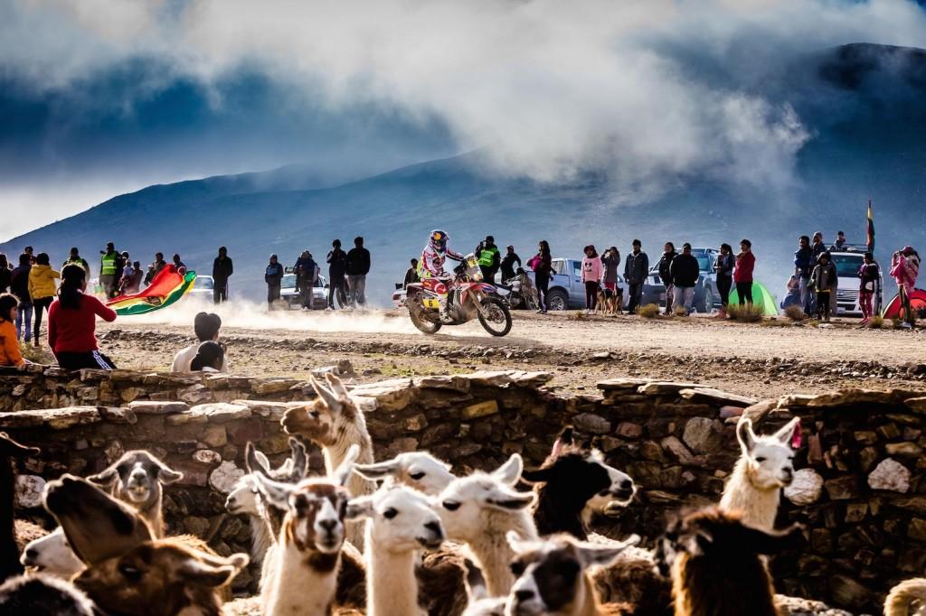 Dakar 2016 - Joan Barreda Bort