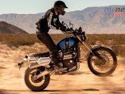 Triumph Scrambler XE Action