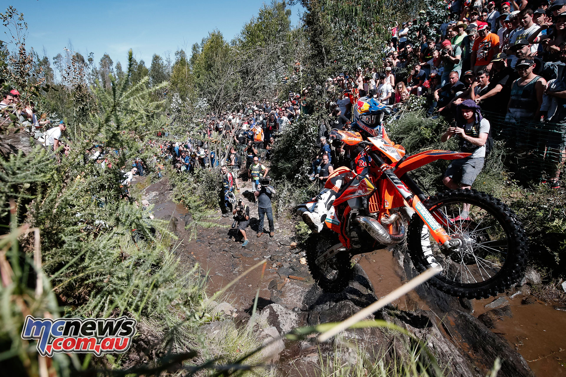 WESS Rnd Extreme XL Lagares Josep Garcia FM