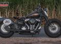Battle of The Kings Harley Davidson AU NZ Gold Coast Harley Davidson