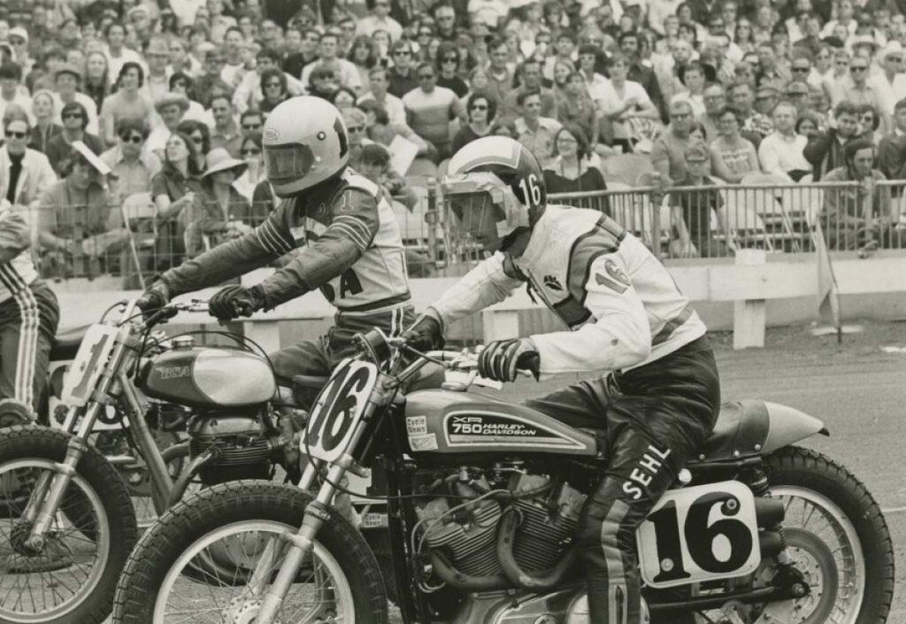 Harley XR Sehl